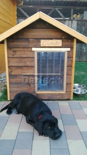 átlátszó pvc kutyaajtó